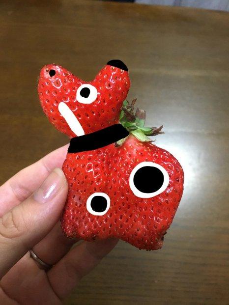 Fresa-gato-2