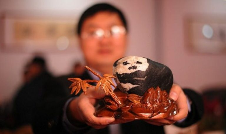 piedra con forma de oso panda